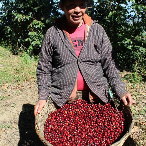 El Salvador Finca El Aguacatel 1 Kilo