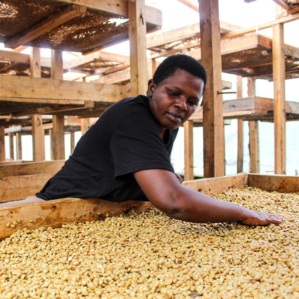 Uganda Waninda Budada 1 Kilo
