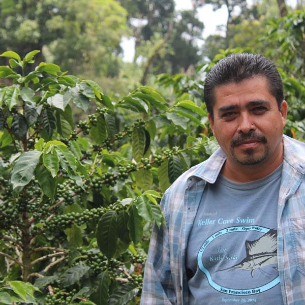 Honduras Finca Miraflores 1 Kilo