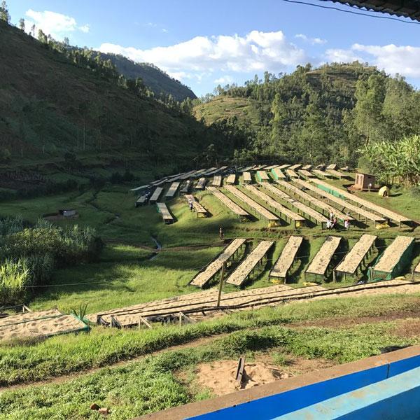 Rwanda Huye Mountain 1 Kilo