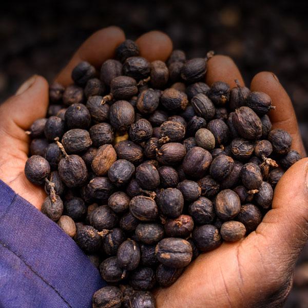 Rwanda Huye Mountain 250g