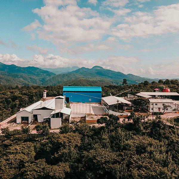 Guatemala Blue Ayarza Vinoso